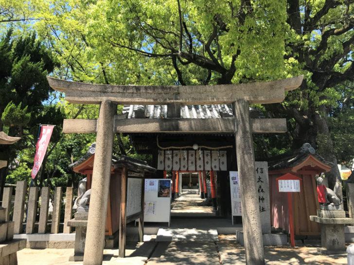 信太森葛葉稲荷神社の鳥居
